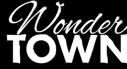 WonderTown_Logo_Thk.png