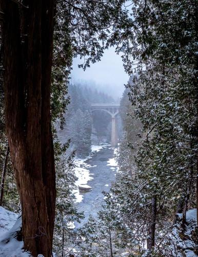 Reversed Image of elora gorge bridge for t-shirt iron on transfer
