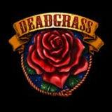 DeadGrass_Thumbnail.jpg
