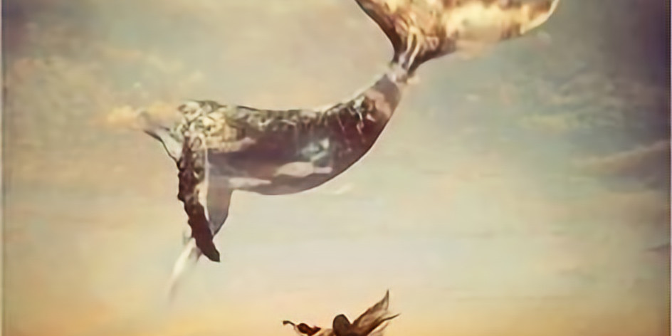 Nia the Dance of Freedom