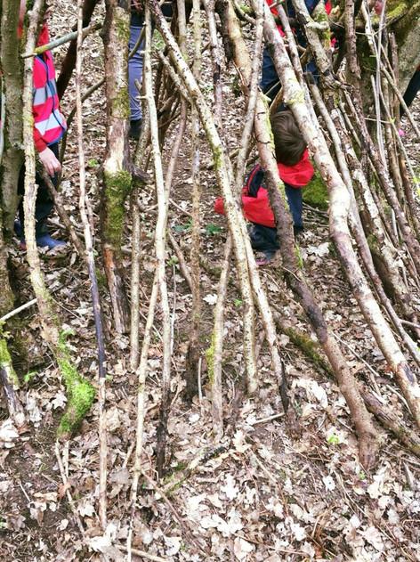 A house made of sticks