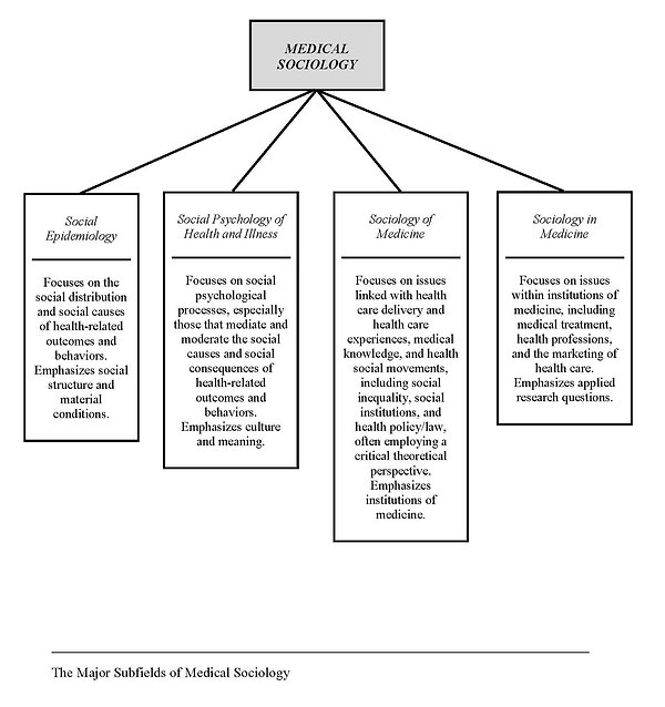subfields in medical sociology figure