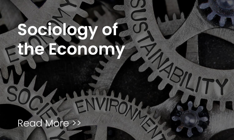 sociology of the economy