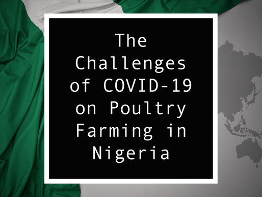 The Challenges of COVID-19 on Poultry Farming in Nigeria