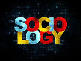 Sociology as a Discipline for all Disciplines