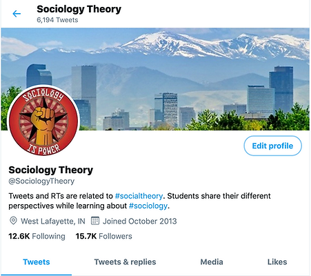 Screen Shot of @sociologytheory on twitter