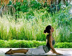 yoga-nature-2.jpg