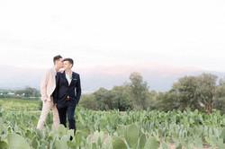 Wedding Photographer Western Cape