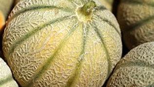 Melon (à l'unité)