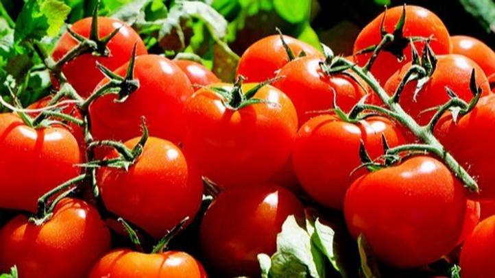 Tomates Grappes (au kilo)