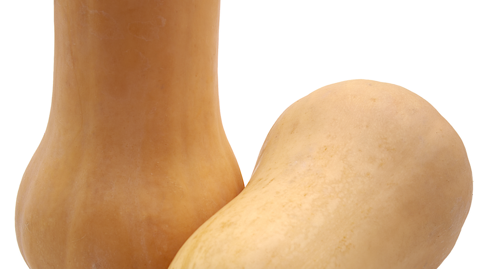 Butternut (à l'unité)