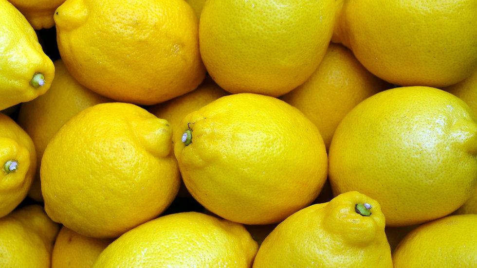 Citrons (lot de 6)