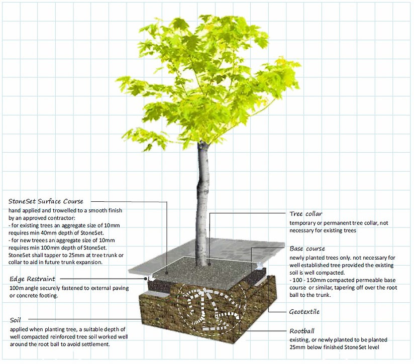 Tree Surrounds Techniqual Specs