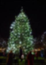 wgc_xmas_lights_2016-232.jpg
