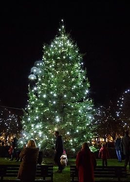 wgc_xmas_lights_2016-232.jpg