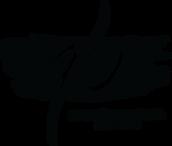 Logo QB - UFFICIALE.png