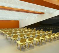 Haward Brandston Lighting Design Compitition  - Multipurpose Hall- Singh Center , Philadelphia