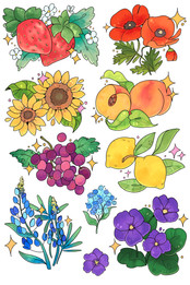Fruits + Flowers