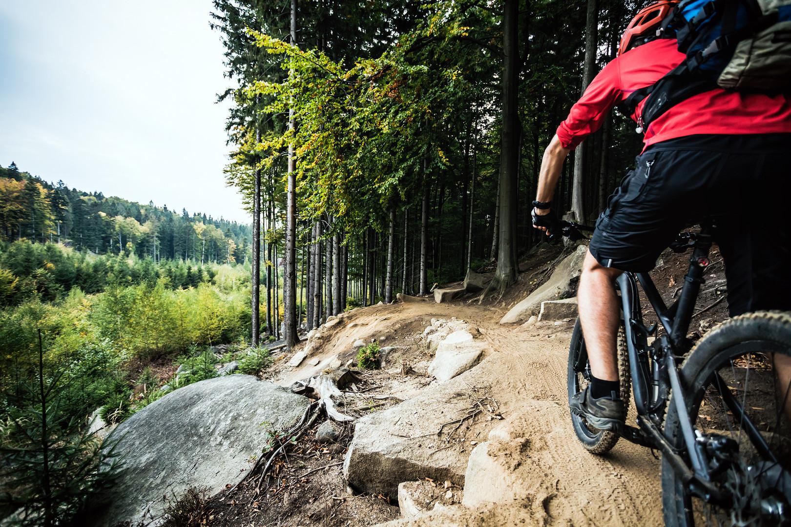 Trail- Sonntag