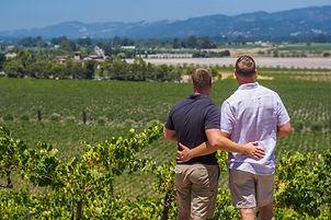 Boyz View Vineyards.jpg