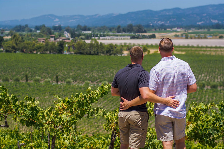 Boyz View Vineyards.jpg