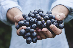 Man-Holding-Grapes-in-His-Hands.jpeg