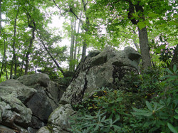 Flag Rock Recreation Area 1
