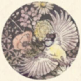 helcircle6.jpg
