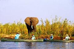Rafting sur lke Zambeze