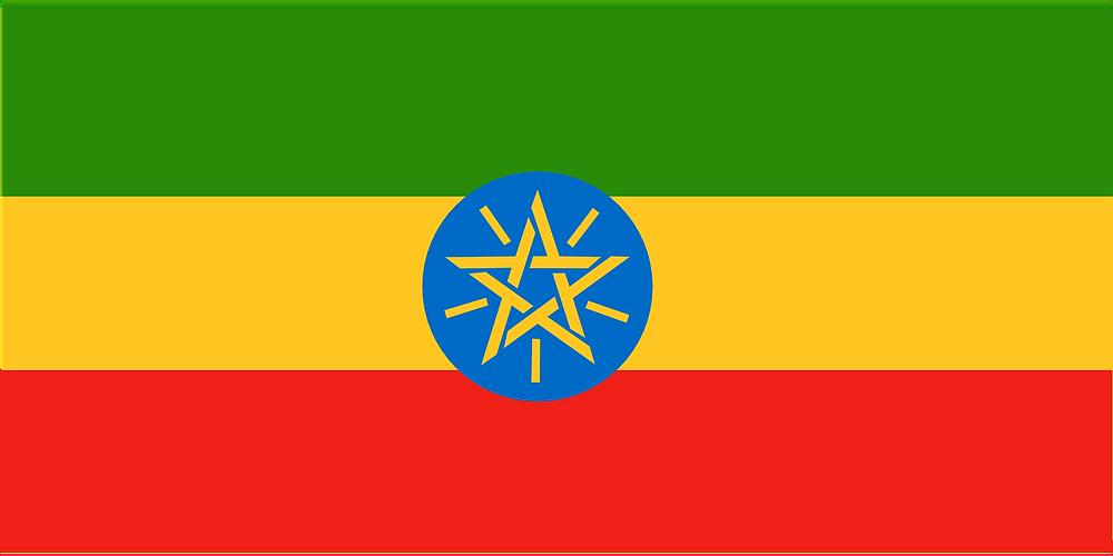 Wararka Maanta Ethiopia (Somger) - Dowlada Itoobiya ayaa shaacisay khasaarihii xooganaa ee ka dhacay dalkaaasi, rabshadahaasi ayaa ahaa mid aa u weyn waxaan lagu toogtay Haacaluuu Hundeessa oo ahaa mid kamid ah fanaaniinta ugu caansan itoobiya.