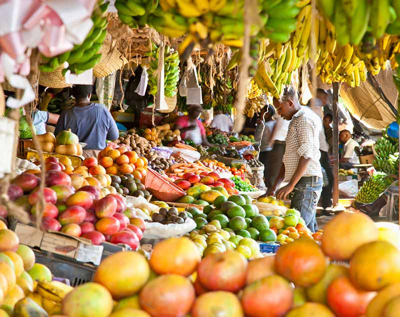 Lowers cholesterol. Papaya is rich in fibre, Vitamin C and antioxidants which prevent cholesterol build up in your arteries. ... Helps in weight loss. ... Boosts your immunity. ... Good for diabetics. ... Great for your eyes. ... Protects against arthritis. ... Improves digestion. ... Helps ease menstrual pain.