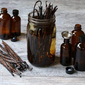 Vanilla Tincture