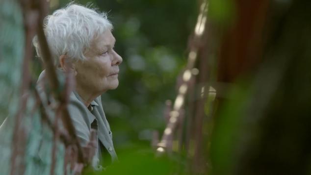 Judi Dench's Wild Borneo Adventure