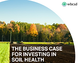 The Business Case for Investing in Soil