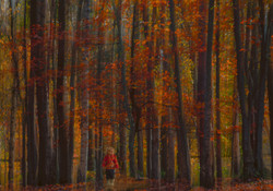 SEARCHING FOR CONKERS by Laura Drury