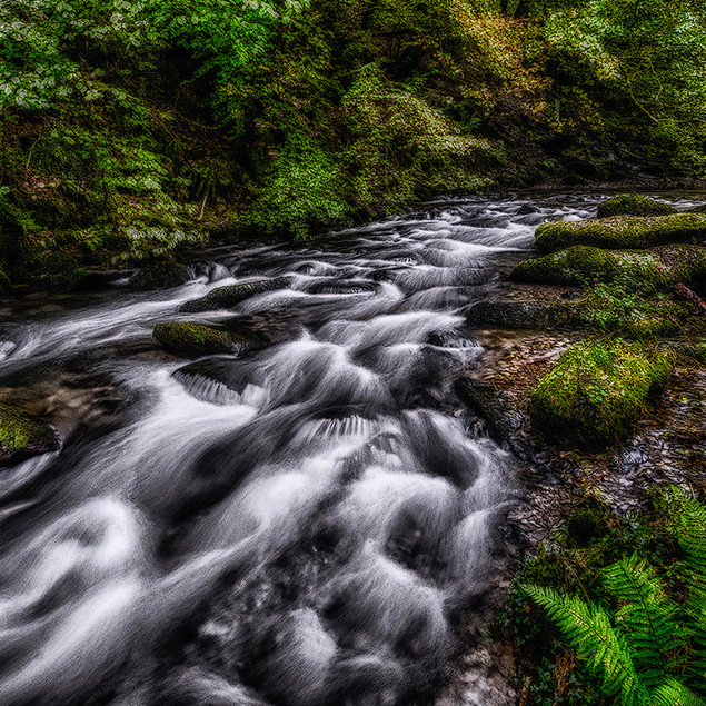 DEVON RIVER RAPIDS by Terry Scales