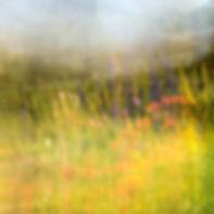 FLOWER GARDEN MONET STYLE by Cherry Larc