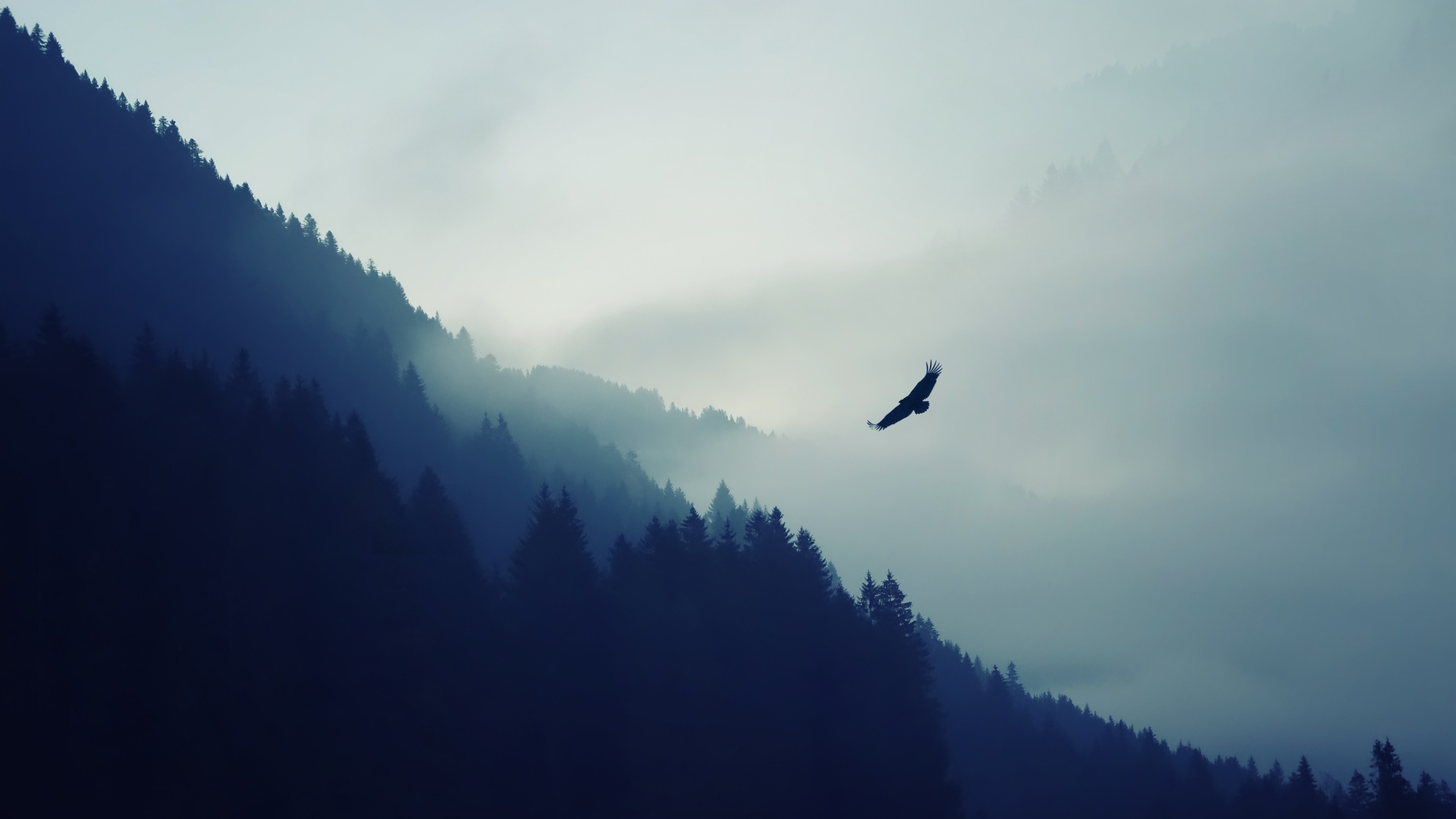 nature_mountain_eagle_fog_landscape_ultr