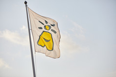 Vår flagga