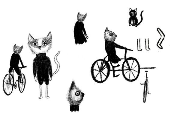 catimation.png