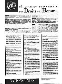 declaration droits de l'homme.jpg
