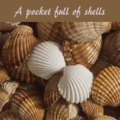 A pocket full of shells.jpg