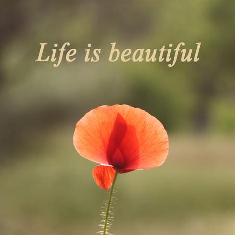 Life is beautiful.jpg