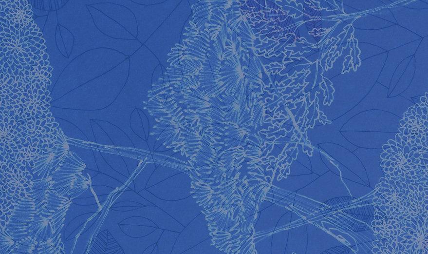 Frida-cover-CMYK-25_edited.jpg