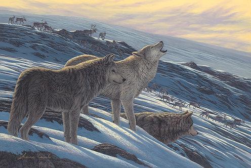 Arctic Encounter (metal)