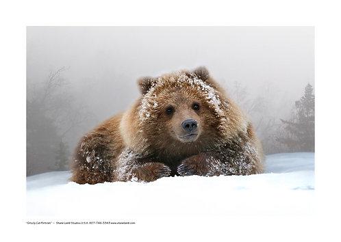 Grizzly Cub Portrait (paper)
