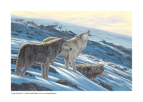 Arctic Encounter (paper)