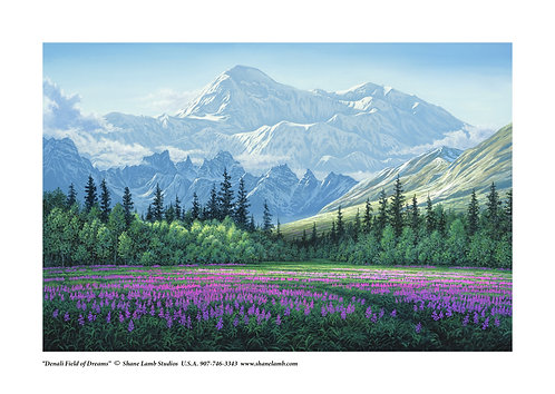 Denali Field of Dreams (paper)