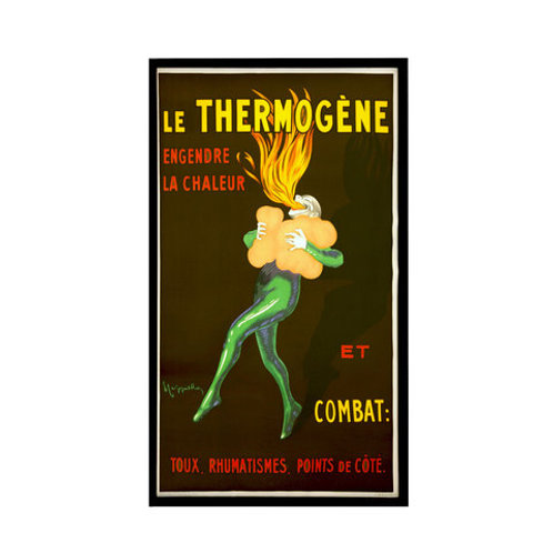 Poster Le Thermogene