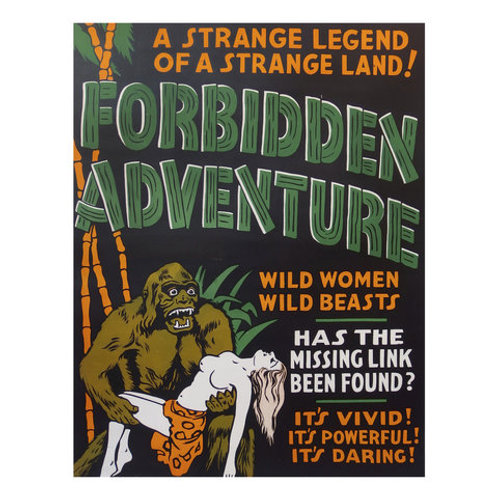 Poster Forbidden Adventure
